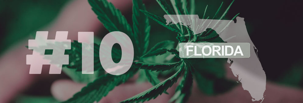 Top-10-things-about-CBD-oil-in-Florida